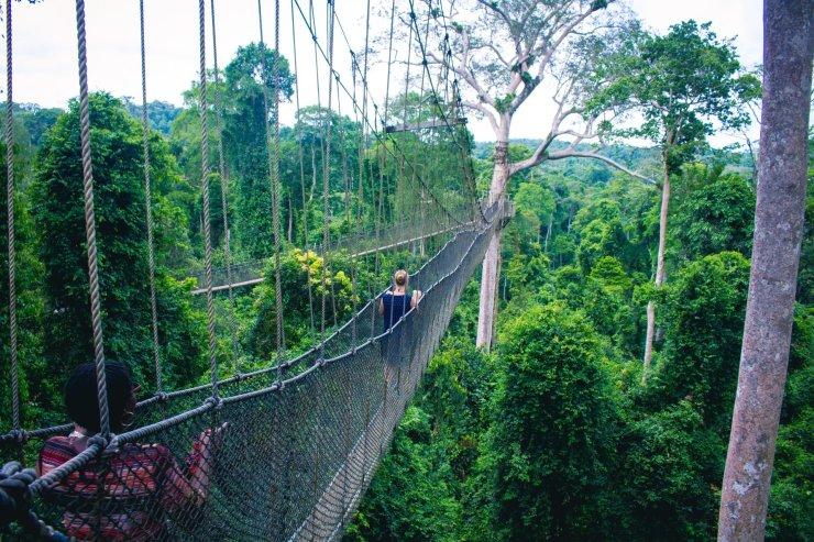 Kakum National Park Canopy Walk of the Central Region of Ghana