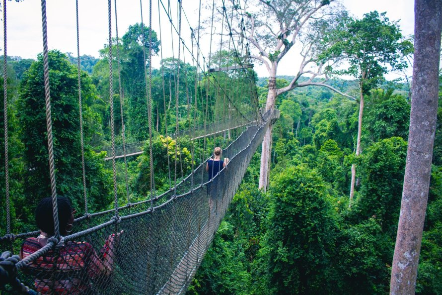 Kakum National Park Canopy Walk of the Central Region of Ghana