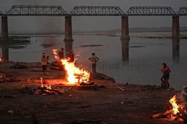 Over 50 bodies washed up on India's Ganges River bank