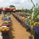 Ghana Government & International Institute of Tropical Agriculture sign Agreement