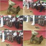 Moment of awe: Chicken and chick 'welcome' Mahama at Dixcove