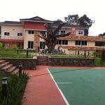 Osafo-Marfo Hijacks Bawumia's Official Residence