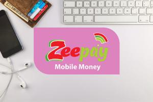 Zeepay mobile money service