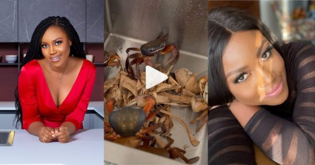 Yvonne Nelson Shares A Video Of Her Running Away From Crabs In Her Kitchen (Watch Video)