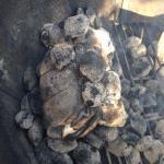 Rosbief in het BBQ vuur 4