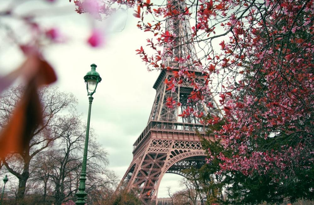 Интересные  факты о париже: Paris facts