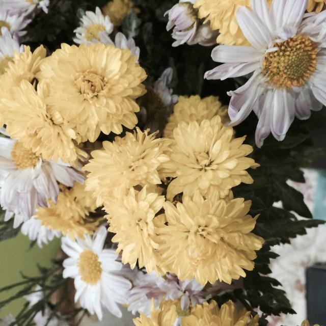 цветы от елены (17)
