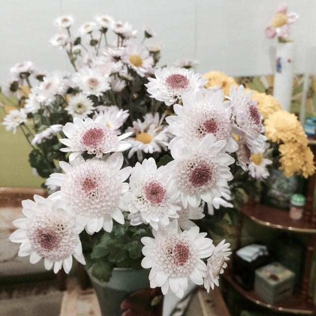 цветы от елены (20)