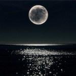 Лунный день 23 ноября 2014 года.