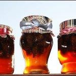 Сосновый мед.