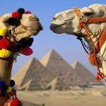 Мудрость Египта.