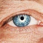 Для улучшения кровообращения глаз...