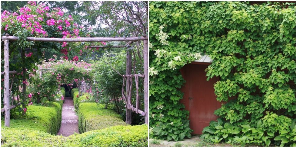 Private Gardens Secret Garden Ideas
