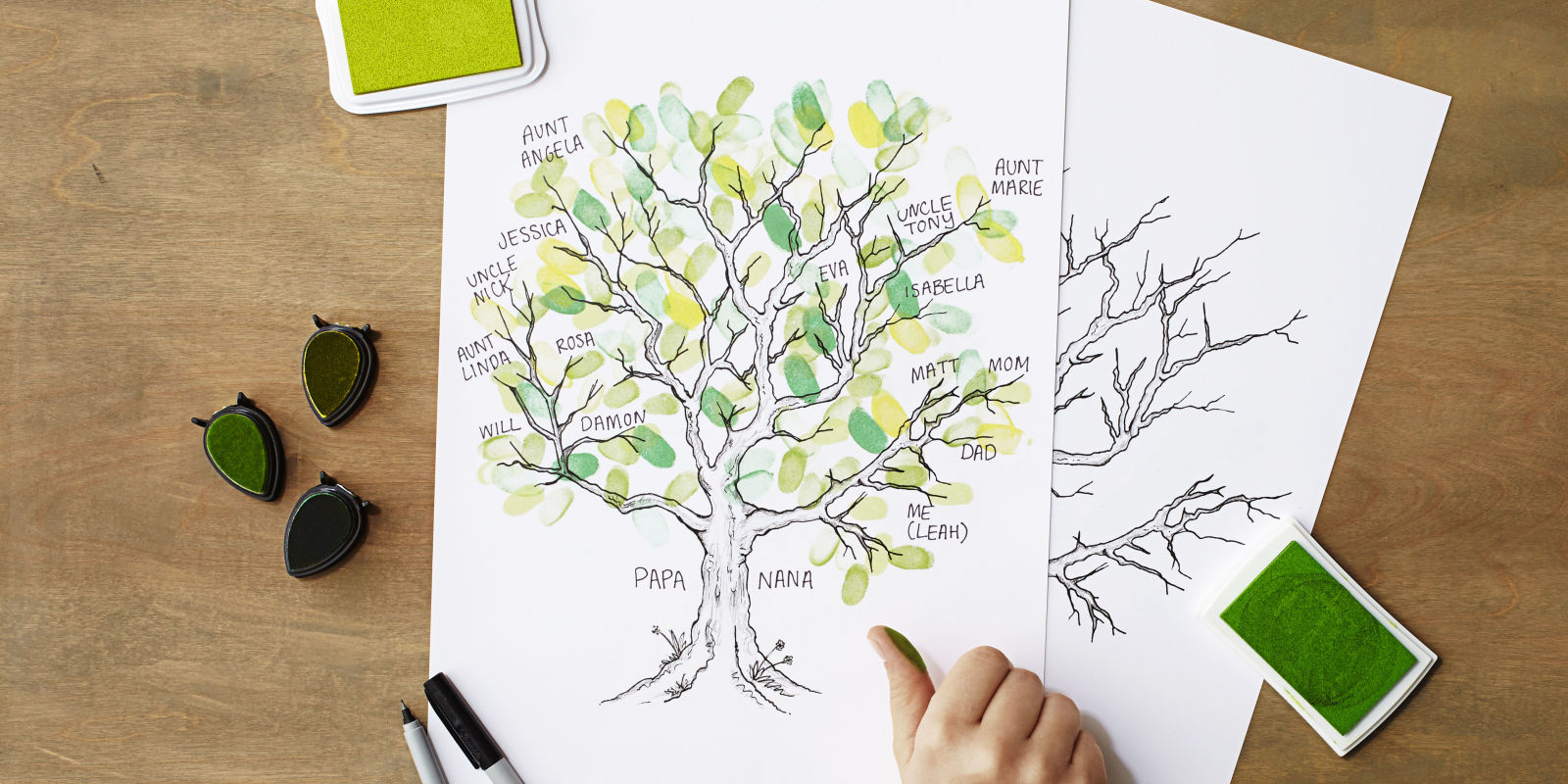 Teach Your Kids About Their Roots With This Delightful
