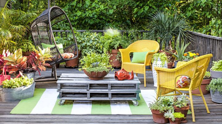 Green up your patio or deck with oversized terracotta or plastic planters overflowing with anything from tomatoes to wildflowers. (The lush lineup here creates a pretty privacy wall!)
