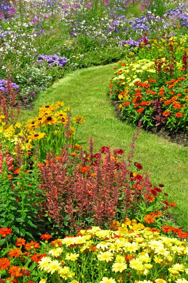20 yard landscaping ideas