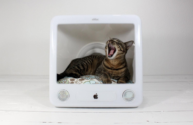 Handmade Cat Bed Ideas  DIY Pet Furniture
