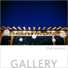 Tina & Kiwon's Gallery