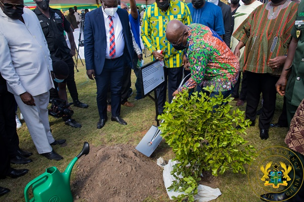 """""""Green Ghana Day not a one-off event , let's nurture trees to maturity- Pres Akufo-Addo"""