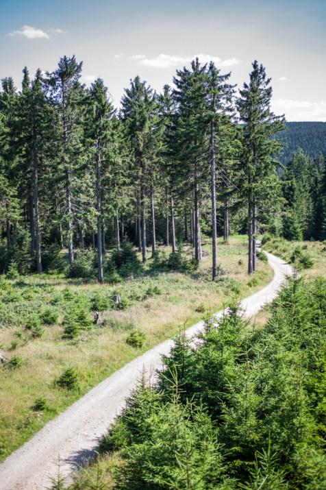 Rennsteig Cycle Path