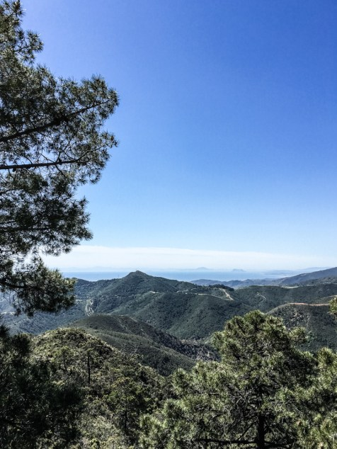 160409_125411_Andalusien
