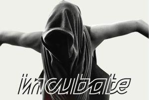 incubate festival 2013 poster