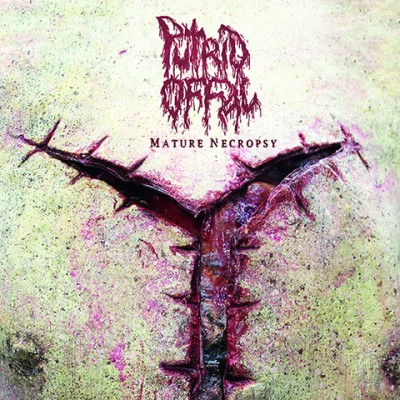 Putrid-Offal_mature necropsy Artwork_480x480