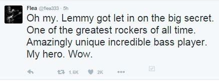 flea RIP lemmy