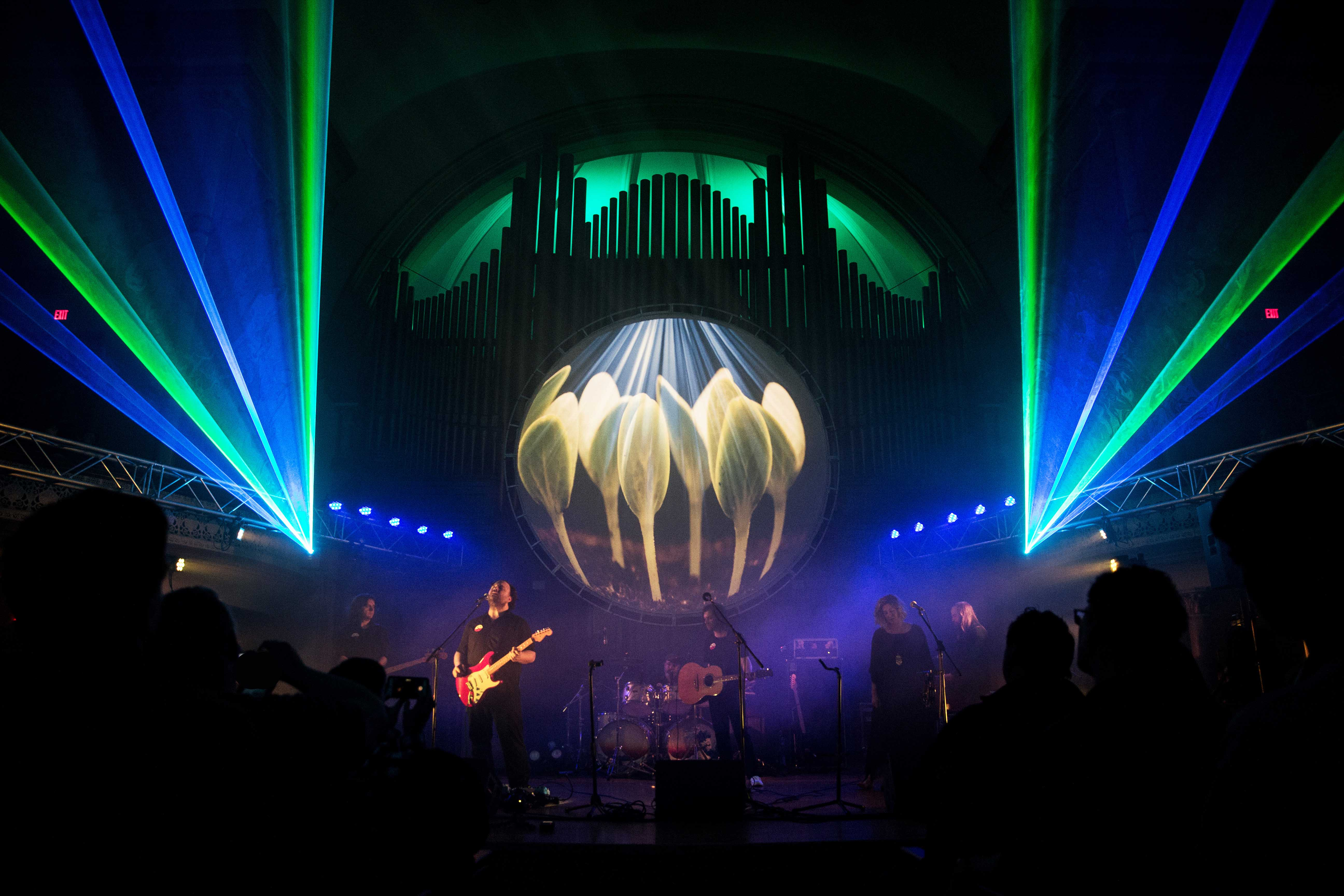 PIGS Pink Floyd Tribute - Lasers