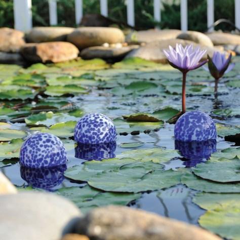 Garden Float