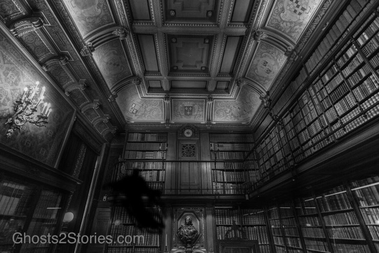 Library with Scary Books