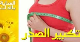 وصفات تكبير الثدي
