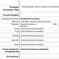 Model Cv Europass Engleza Completat Word Template Resume