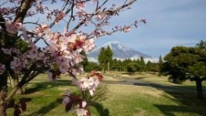 桜まつりゴルフ合宿#10