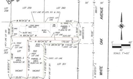 Proposed Development at 10537 White Oak Ave