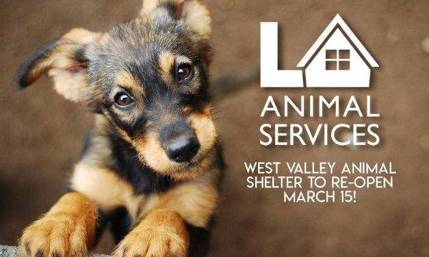 West Valley Animal Shelter to Reopen Next Week, City Announces