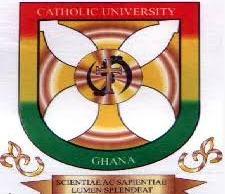 Catholic University College Admission Letter