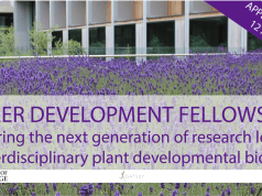 University of Cambridge Research Career Development Fellowships