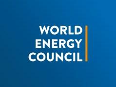 World Energy Council Internship