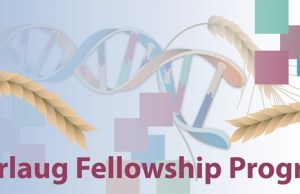 Borlaug International Agricultural Science and Technology Fellowship