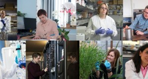 University of Nottingham Faculty of Engineering Research Excellence PhD Scholarship