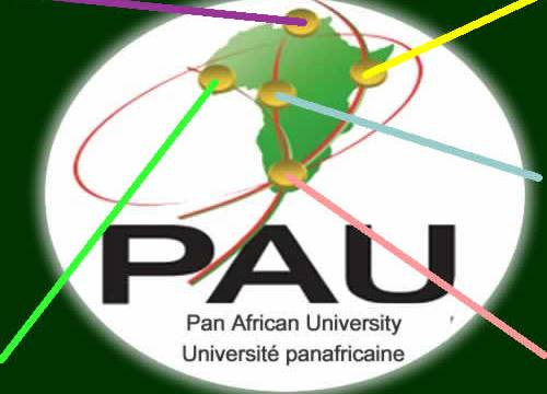 pan-african-university-postgraduate-scholarships