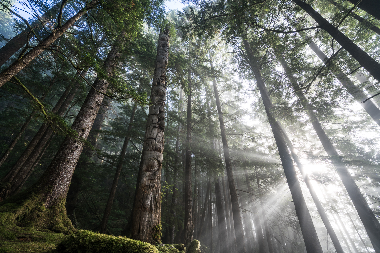 The Secret Haida Totem Poles (Cha'atl)