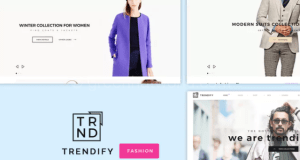 Fashion E-commerce Wp Theme