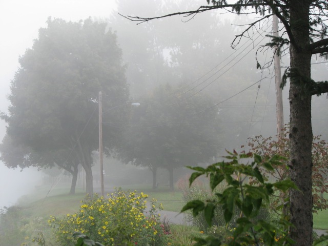 Walkabout 2009 - Riverside Park in the fog, near Washington Ave.