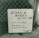 The original Roach Race sign. 1960, Cleland Heights