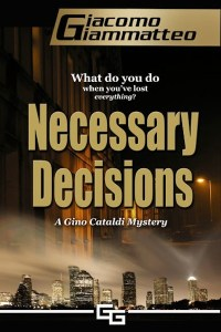 mystery, kidnapping, houston, suspense, thriller,