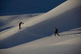 Mountainspace - Tonale scialpinismo e freeride 13