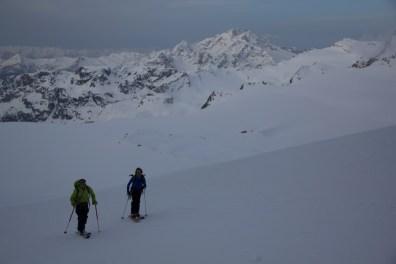 1 pizzo bernina scialpinismo sci direttissima sud canale direttissima mountainspace giacomo longhi (1)