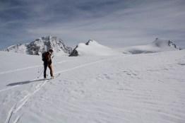 Scialpinismo monte rosa monte rosa highway skialper capanna margherita giacomo longhi mountainspace vincent parrot corno nero balmenhorn zumstein - (10)